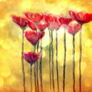 Poppies_in_yellow_card