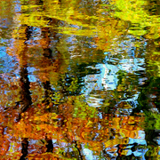 Autumn_pond_card