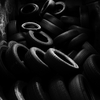 B_w__tires__2__thumb