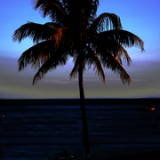 Florida_keys_state_of_mind_card
