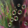 Bubbles_thumb