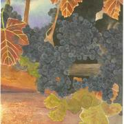 Concord_sunset_grape_painting_art_samuel_worley_card