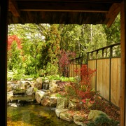 Window_view_of_asian_garden_card