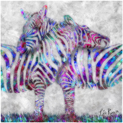 Zebra-couple_nyweb_card