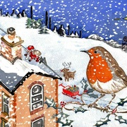 Christmas_robin_2012_reduced_card