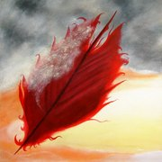 A_red_feather_blows_north_2