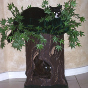 _lil_ganja__cat_tree_card