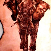 Elephant_fury_1_card