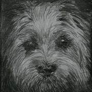 Doggy50x50_web_card