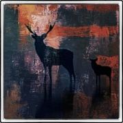 Deers_card