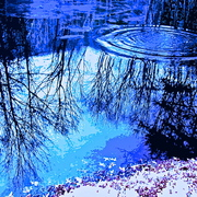 Winter_pond_2_card