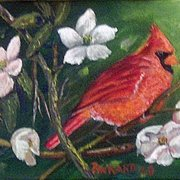 Cardinal_card