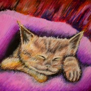 Kitty_blanket_card