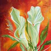 Picture_738calla_lilies_card