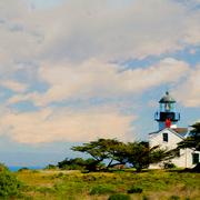 Point_pinos_lighthouse_card
