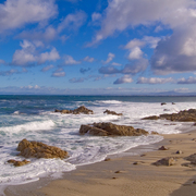 Pacific_grove_seascape_card