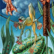 2436-frog-traveller_copy_card