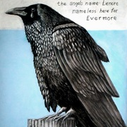 Raven3_card