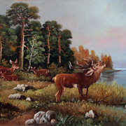 Young_deer_on_the_lake_card