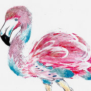 Flamingo_card