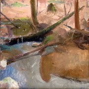Fallen_trees_in_a_stream__12_x_12_inches__oil_on_linen_card
