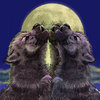 Wolf_cub_moon_3c_567_thumb