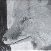 Wise_old_fox_by_ohsofoxy-d5j58nb_card