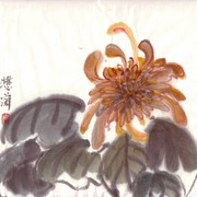 Ch-24-mini-golden_chrysanthemum_card