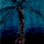Blue_palm_card