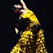 Un_momento_intenso_del_flamenco_card