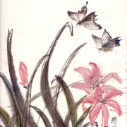 Ch-48-mini_flower_pink_lily_with_butterflies_card