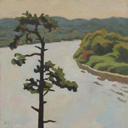Single_pine_50x50cm_oil_card
