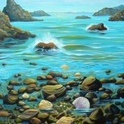 Coromandel_shore_card