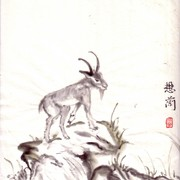 Ch-129-mini_goat_look_over_card