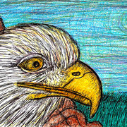 Eagle_perched_on_rocks_card