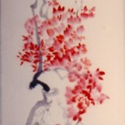 Ch-19-05-7605-bougainvillea_scroll-186-jpg_card