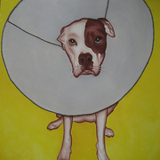 Conedogfinal_card