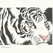 Whitetiger_card
