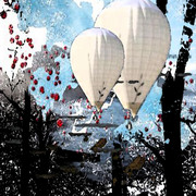 Balloon_forest_card