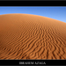 Desert3_square