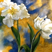 Double_withe_tulips_s_card