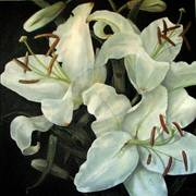 20x20_white_lilies_card