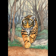Zapp_art_work_for_artigras_012_card