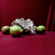 Nature-morte-aux-complement_card