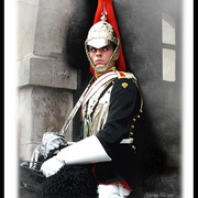 Royal_horse_guards_a_card