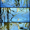 Blue_pond_reflections_triptych_filtered_thumb