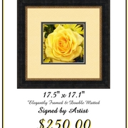 Yellow_rose_frame_print_card