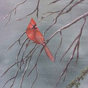 Cardinalinthewinter_card