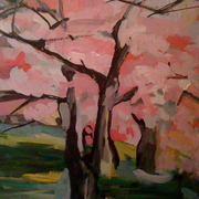 Cherry_blossom_111_card