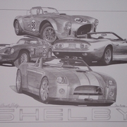 Shelby_by_sketchesbychris_card